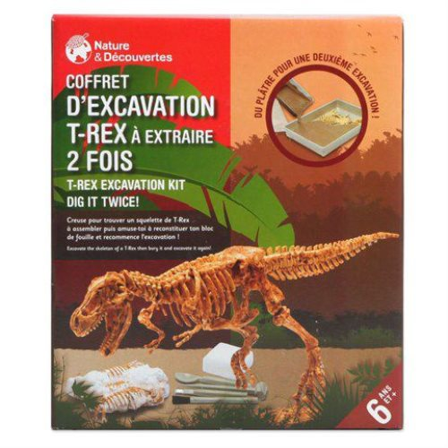 Coffret d'excavation T-Rex