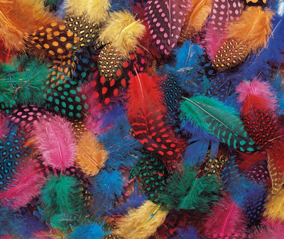 Plumes fantaisies