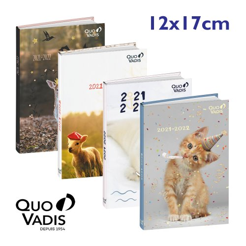 Agenda Scolaire ; Quo Vadis 'Friends' (12x17cm), 1 page par jour - (illustration assortie)