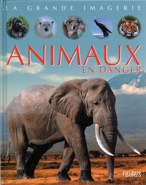 Animaux en danger