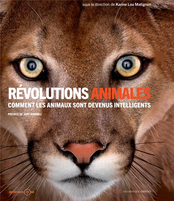 Révolutions animales, Comment les animaux sont devenus intelligents